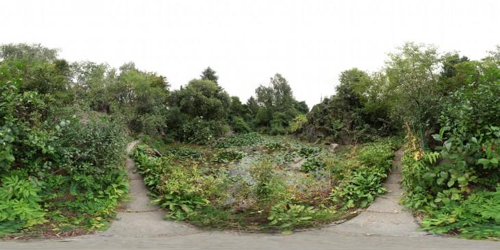 Ботанический сад, альпинарий